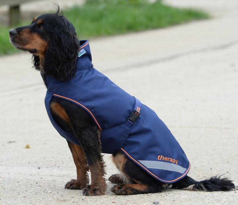 Bucas Recuptex Therapy Dog Rug