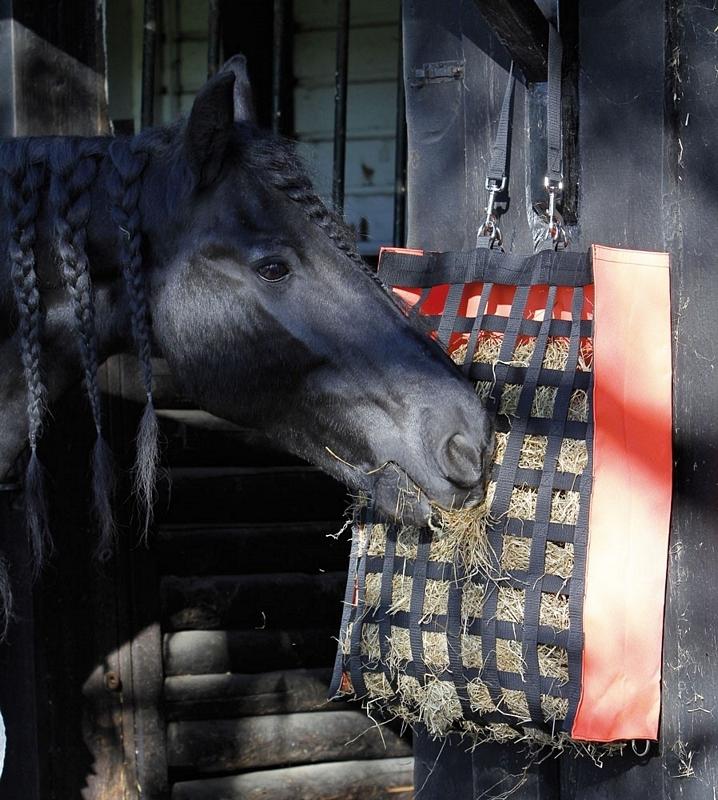 Harry's Horse Hooitas Adagio