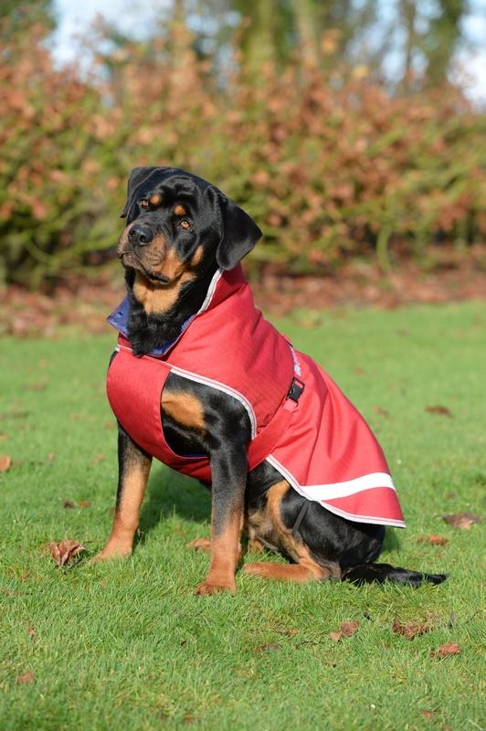Bucas Freedom Dog Rug 50gram