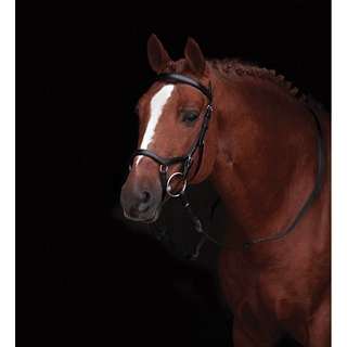 Rambo Micklem Competition Bridle - Bruin