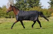 DKR Outdoordeken Luxe 100 Ponydeken