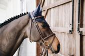 Kentucky Horsewear Oornetje Long Stone & Pearl Soundless