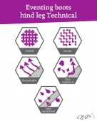 QHP Eventing achterbeenbeschermers Technical