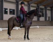 QHP Rijbroek Chelsey Junior Anti-slip zitvlak