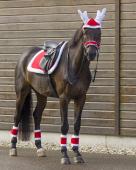 QHP Zadeldek Christmas