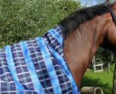 DKR Outdoordeken Halve Hals 150gr Ponymaten