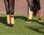 QHP Bandages Holland